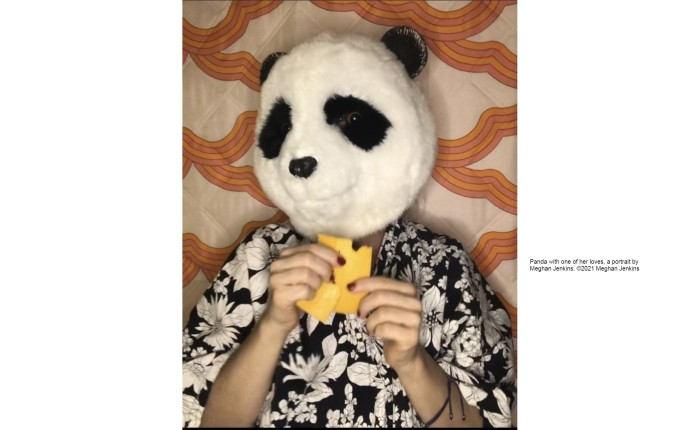 Panda's Blog: Now withPumpkins!